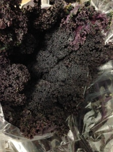 PP Red kale